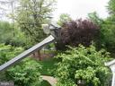 TREED VIEW - 6009-E MERSEY OAKS WAY #4E, ALEXANDRIA