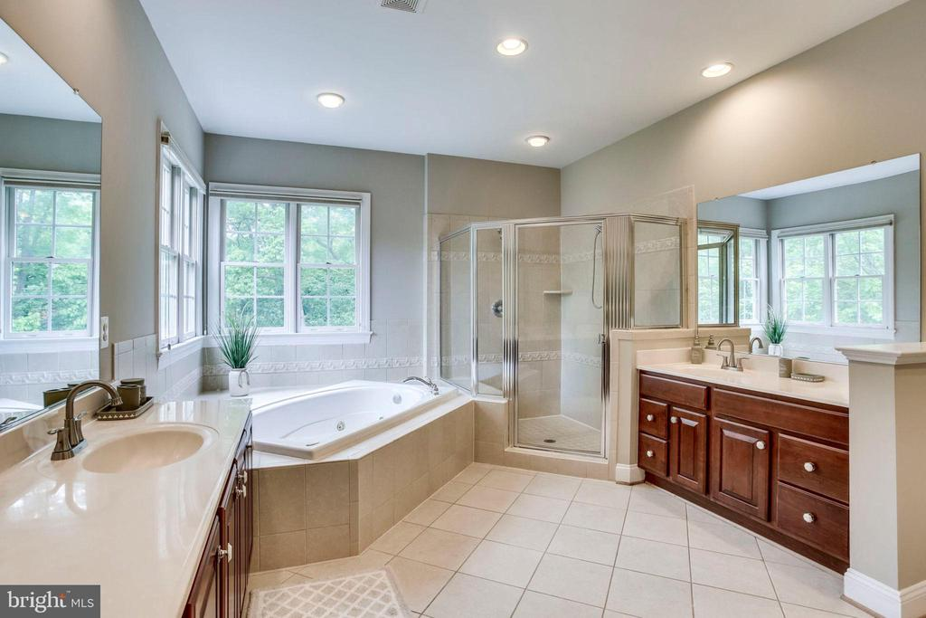 Spa Bathtub with relaxing views - 11692 CARIS GLENNE DR, HERNDON