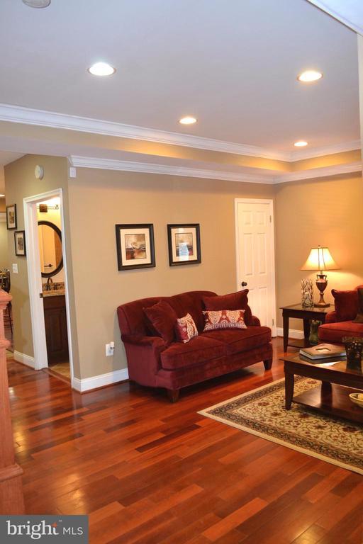 Beautiful Living Room - 1724 BAY ST SE, WASHINGTON