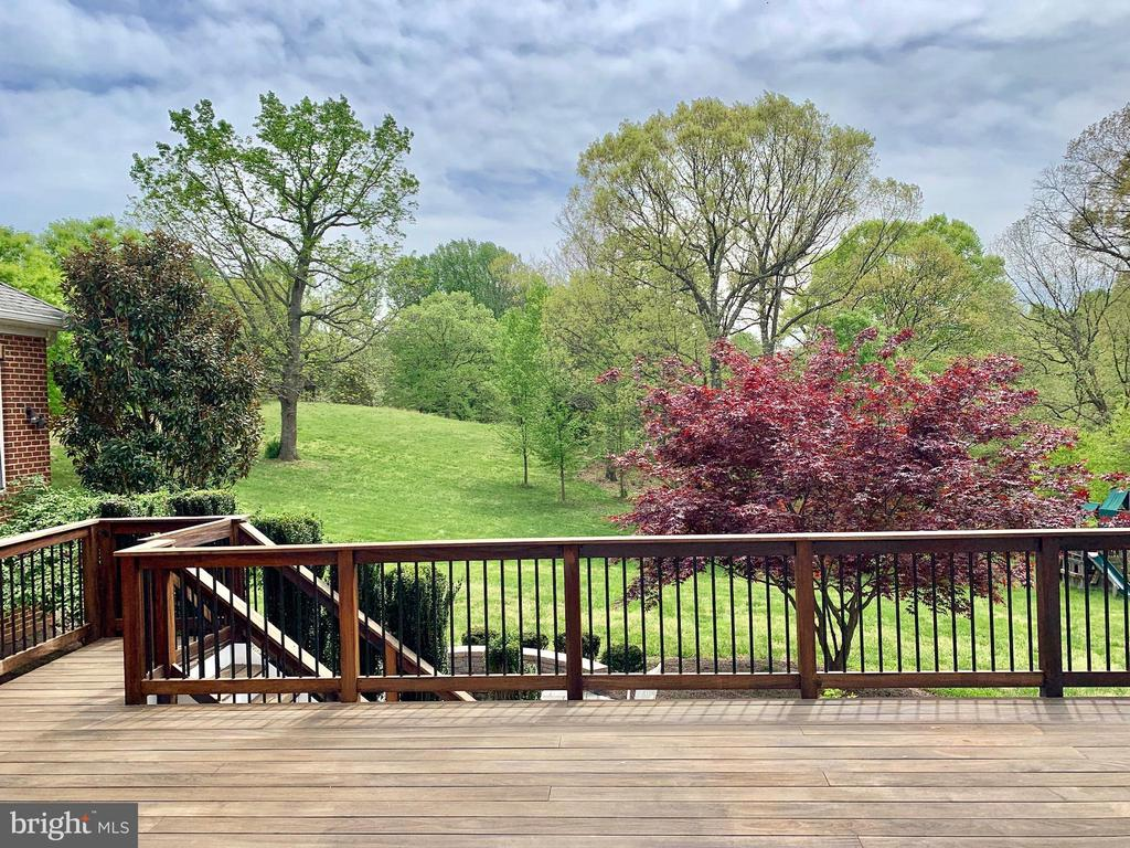 View From Deck - 12775 YATES FORD RD, CLIFTON