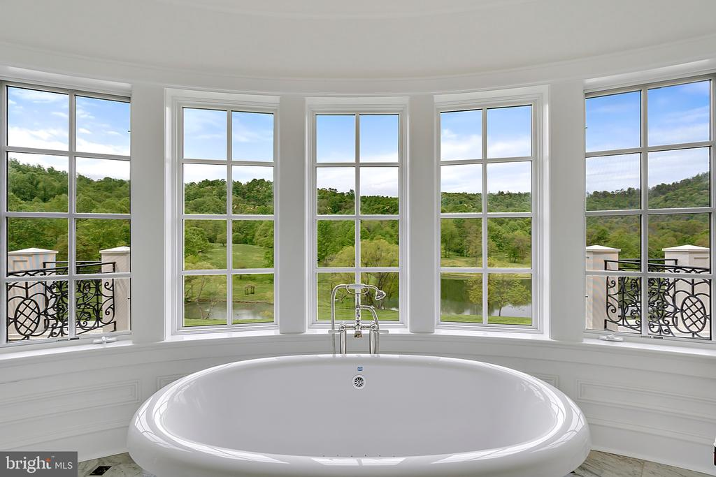 View from soaking tub - 12410 COVE LN, HUME