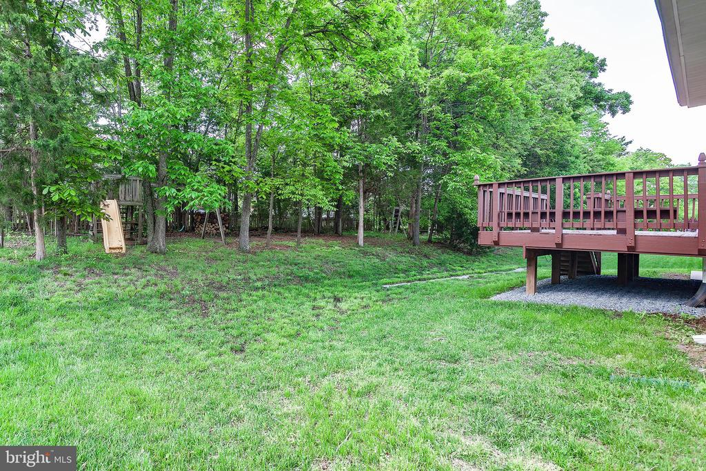 Private Backyard with Wooded Lot - 25425 BRADSHAW DR, CHANTILLY