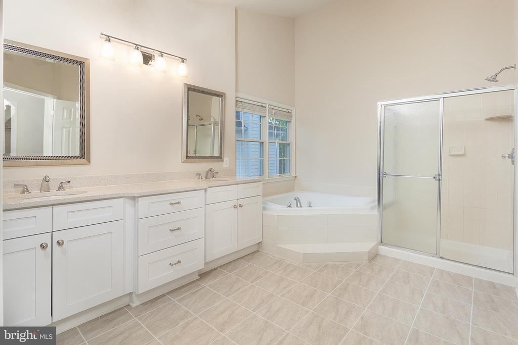 Updated Master Bathroom - 25425 BRADSHAW DR, CHANTILLY