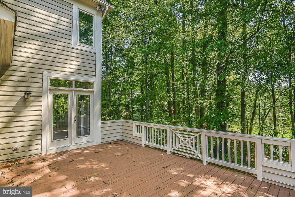 Access to Deck from Breakfast & Family Rooms - 11330 BRIGHT POND LN, RESTON