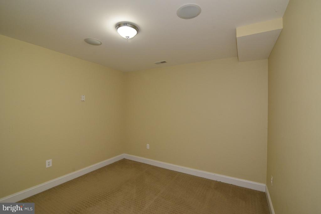 Lower Level Room - 17969 BATTLE PEAK CT, HAMILTON