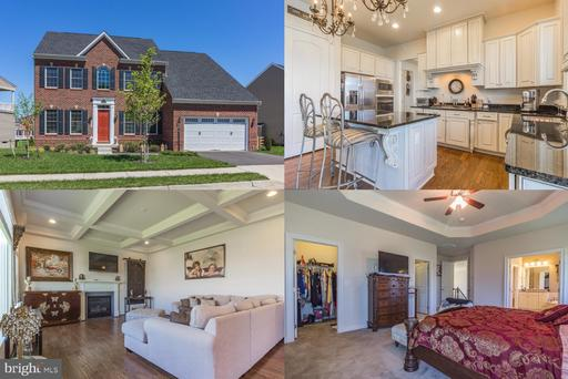 41514 CARRIAGE HORSE DR