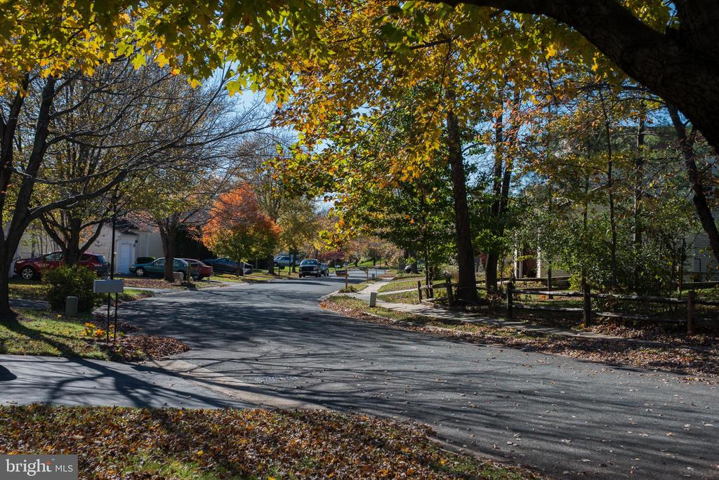 Quiet street view - 14069 SADDLEVIEW DR NW, NORTH POTOMAC