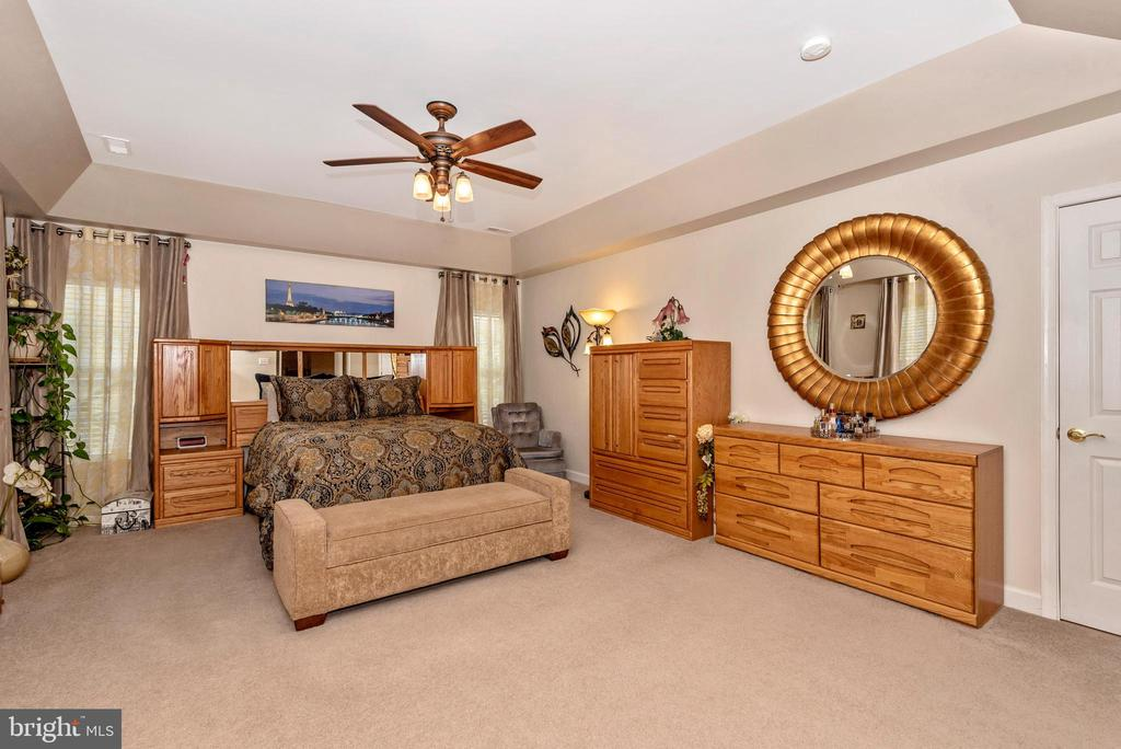 Master with door to extra storage space! - 1808 GREYSENS FERRY CT, POINT OF ROCKS