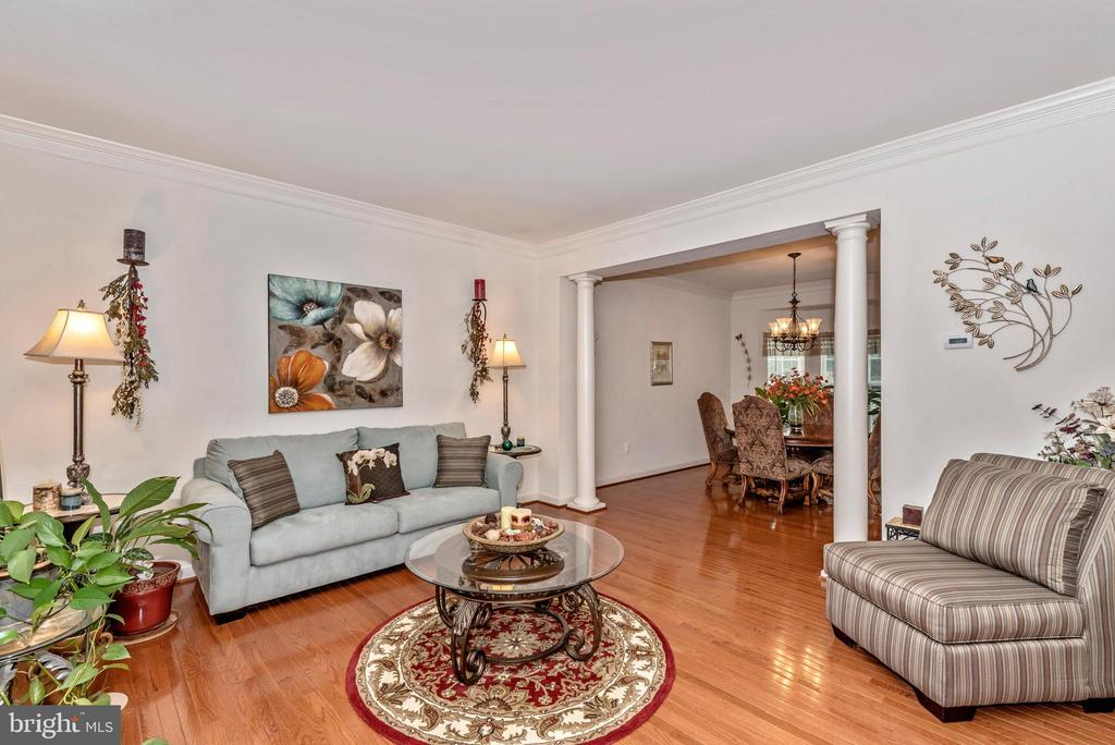 Comfortable formal livingroom - 1808 GREYSENS FERRY CT, POINT OF ROCKS
