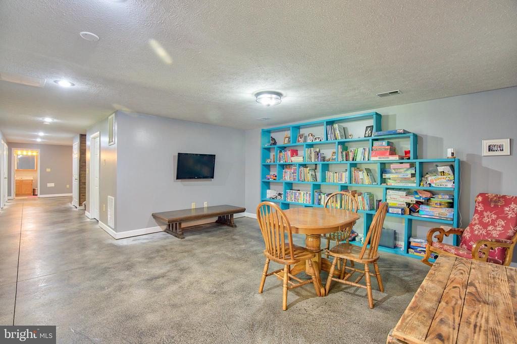 Family Room/Game Room in the basement! - 87 LONESOME FLATS RD, FRONT ROYAL