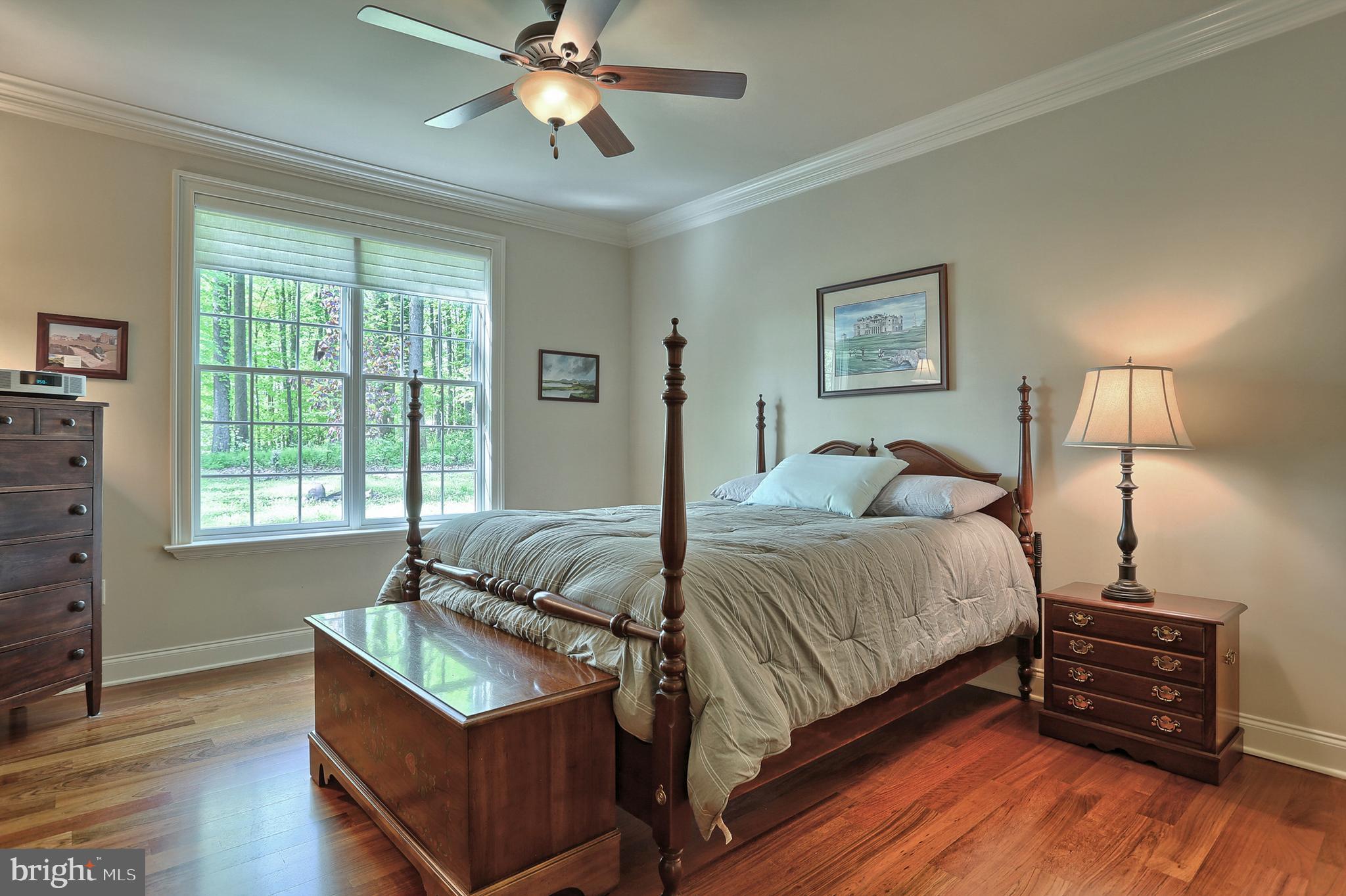 3rd bedroom (13x18) on main w WIC
