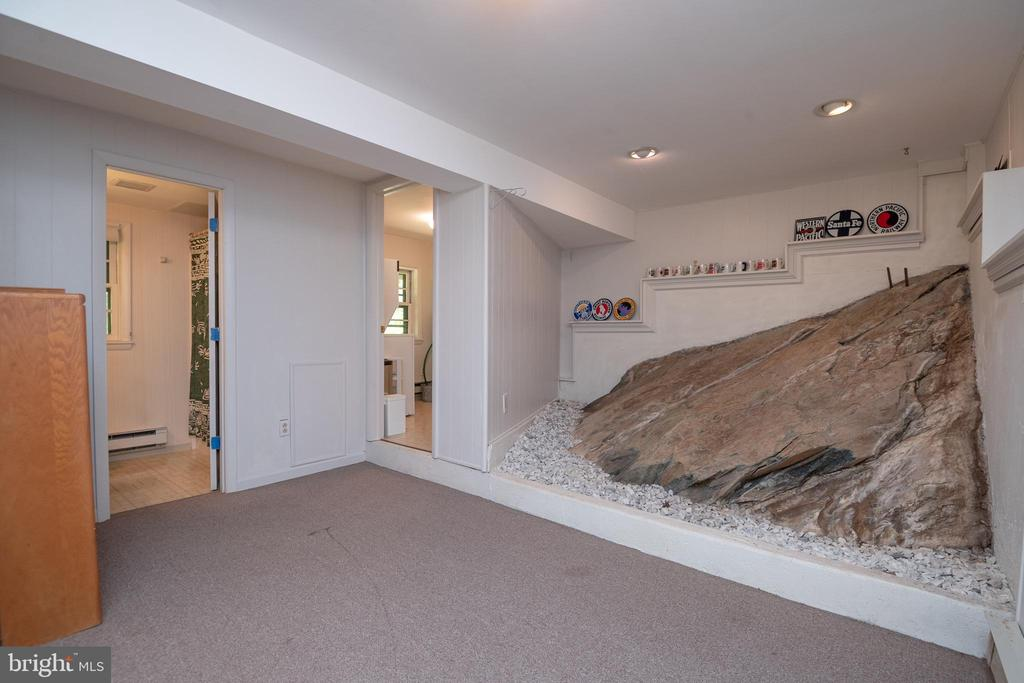 Natural rock formation in recreation room - 231 SHADY TREE LN, FRONT ROYAL
