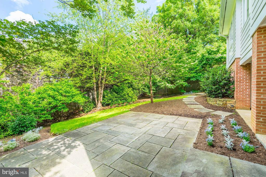 Patio, very private garden - 4423 SPRINGDALE ST NW, WASHINGTON