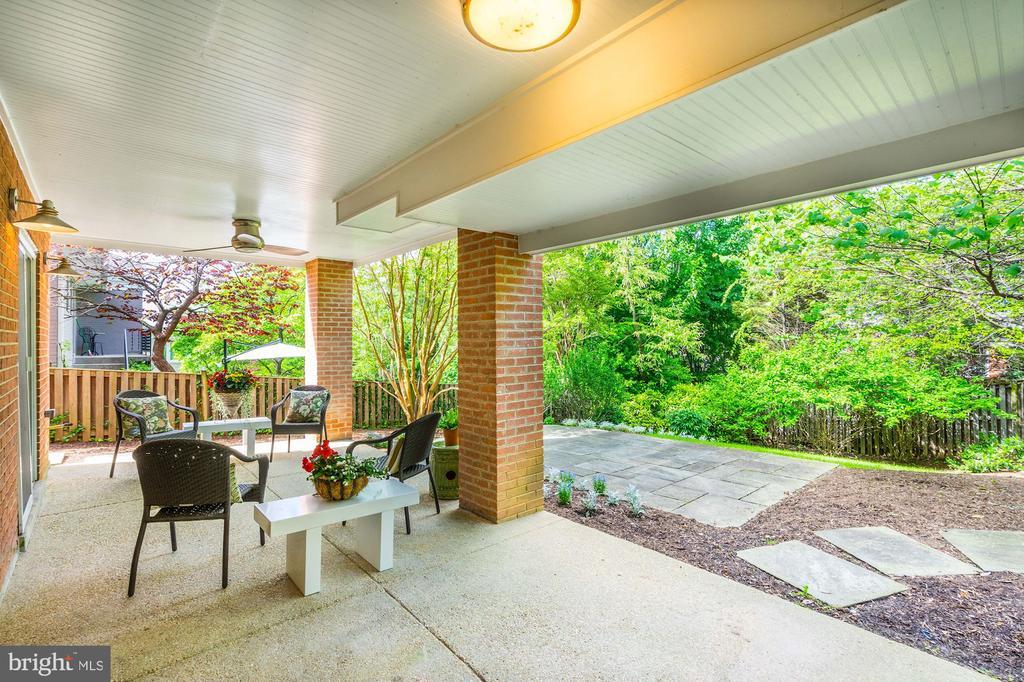 Rear garden - 4423 SPRINGDALE ST NW, WASHINGTON
