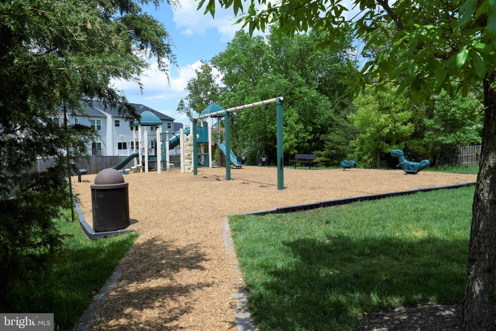 Playground - 22876 CHESTNUT OAK TER, STERLING