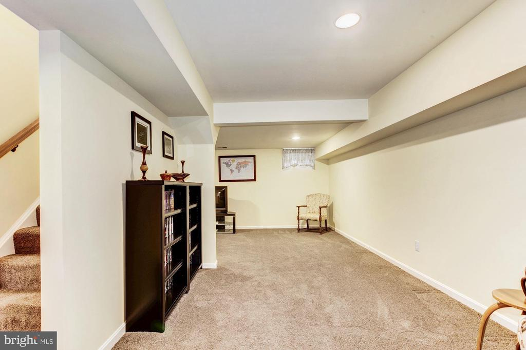 Rec Room - 7814 MORNING GLEN LN, ALEXANDRIA