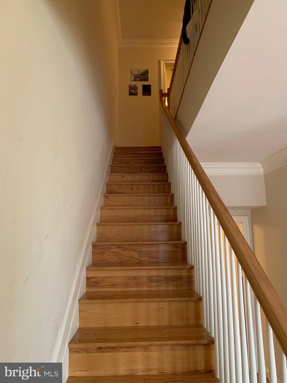 Stairs to private rooms on next level - 1210 NW R ST NW #313, WASHINGTON