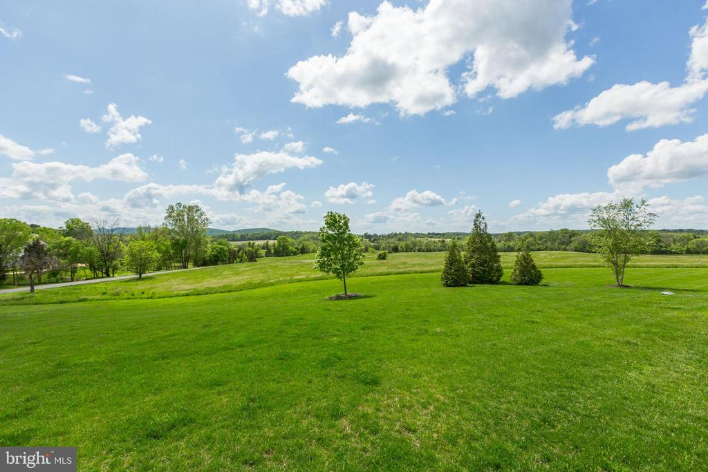 Gorgeous mountain views - 22883 CREIGHTON FARMS DR, LEESBURG