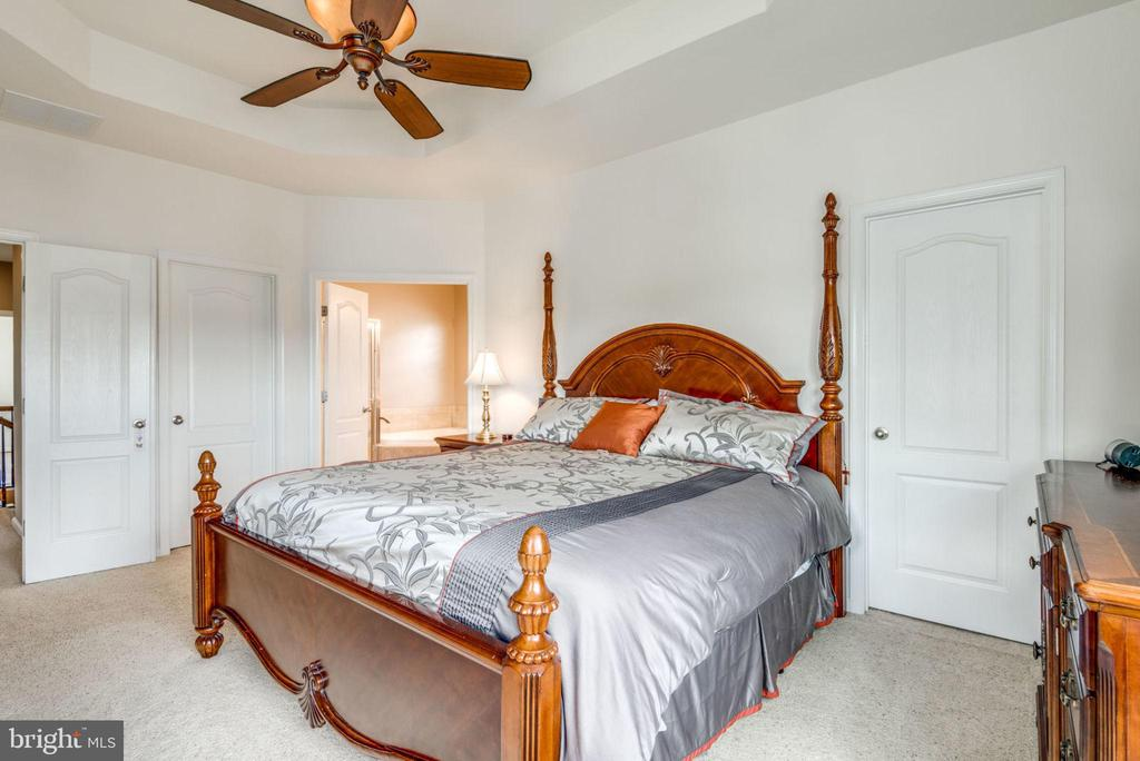 Tray ceiling and two walk in closets - 43172 FLEUR DR, LEESBURG