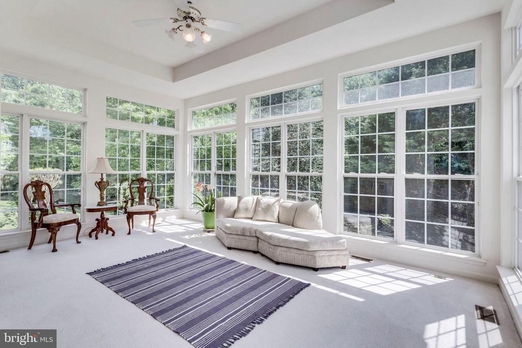 Versatile room:  music, exercise or indoor garden - 3813 NALLS RD, ALEXANDRIA