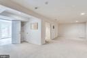 Basement rec room - 3813 NALLS RD, ALEXANDRIA