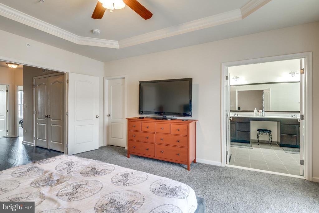 Master Bedroom with Huge Walk-in Closet - 23506 BELVOIR WOODS TER, ASHBURN