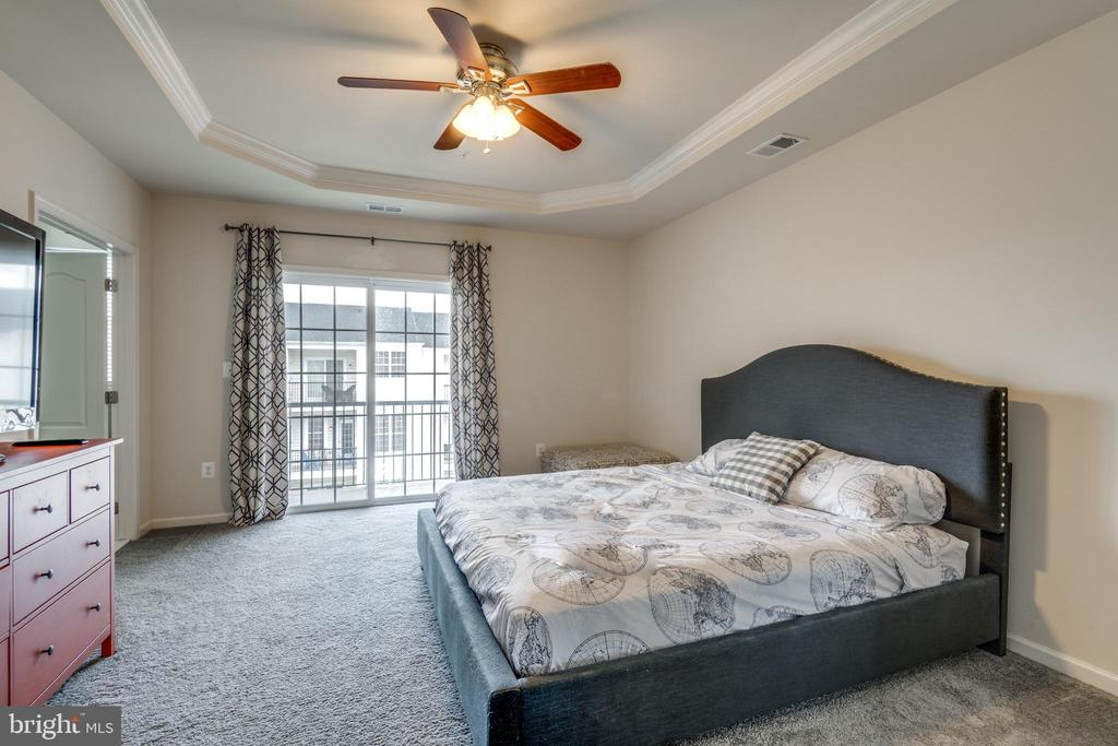Master Bedroom with Tray Ceiling - 23506 BELVOIR WOODS TER, ASHBURN