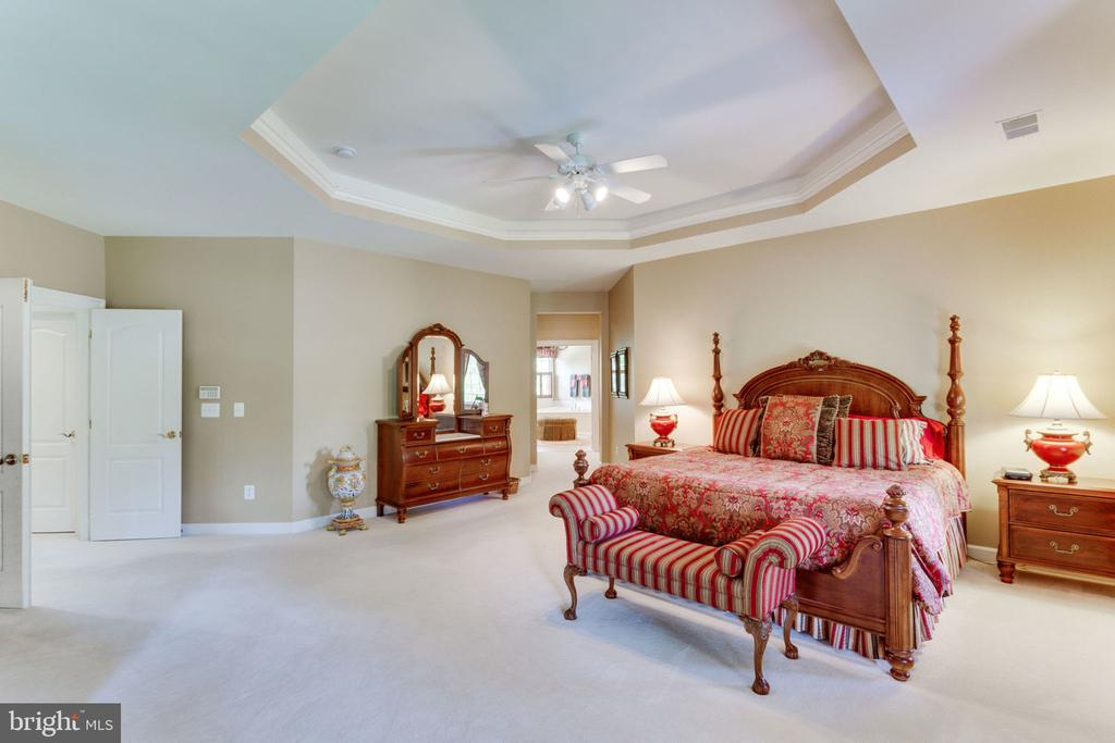 Master Bedroom with tray ceiling rope lighting - 3530 SAINT AUGUSTINE LN, OAKTON