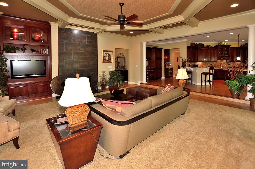 FAMILY ROOM WITH MEDIA NICHE - 4653 AUTUMN GLORY WAY, CHANTILLY