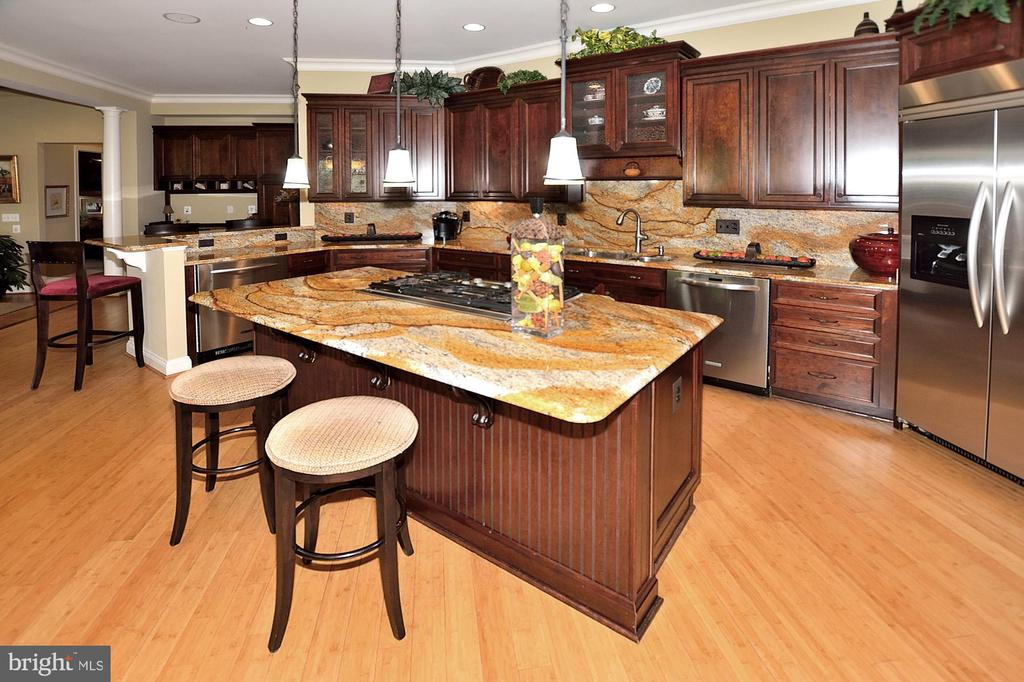 KITCHEN WITH STAINLESS STEEL APPLIANCES - 4653 AUTUMN GLORY WAY, CHANTILLY