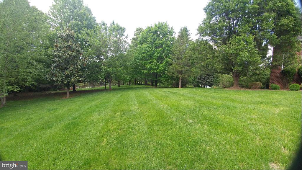 Private side yard - 380 LOCUST DALE RD S, FRONT ROYAL