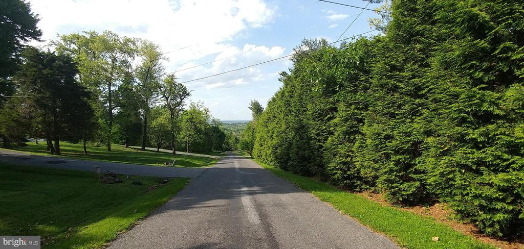 Main road to house.  View of town below. - 380 LOCUST DALE RD S, FRONT ROYAL