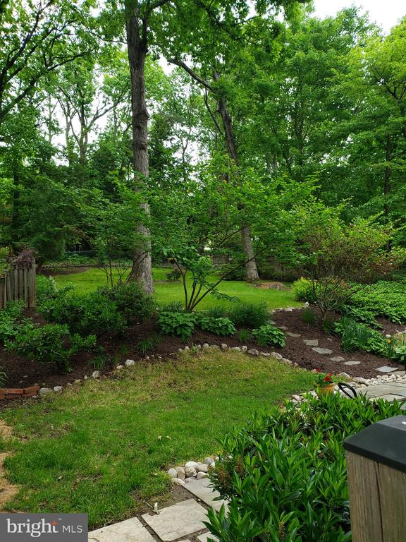 Back yard - 3103 CREST AVE, CHEVERLY