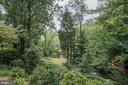 View of Backyard with Summer Foliage - 3502 PINETREE TER, FALLS CHURCH