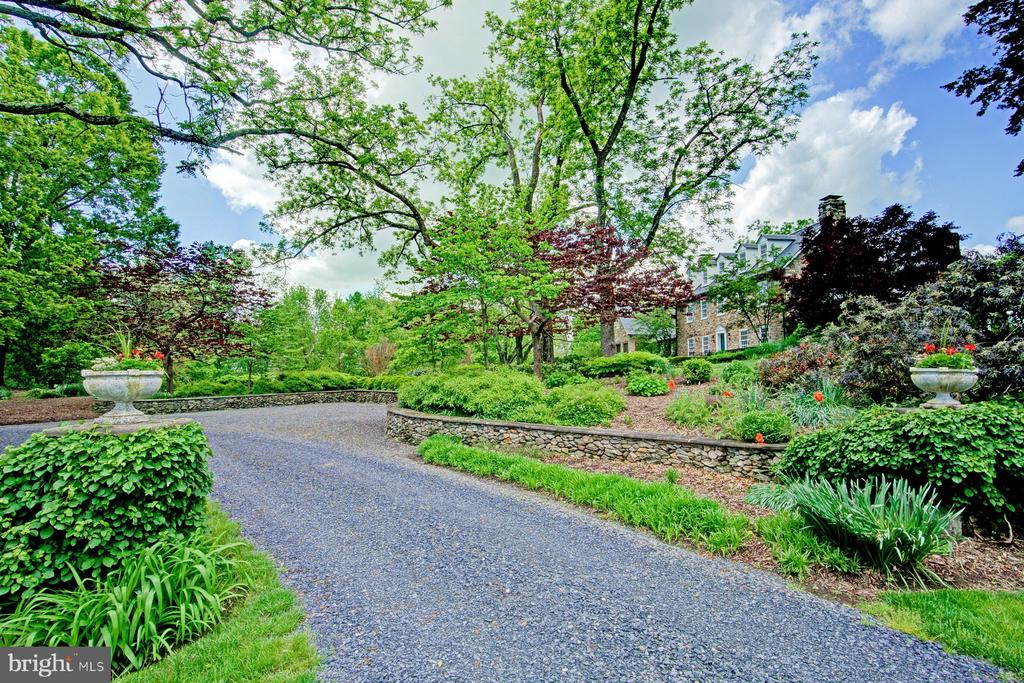 Winding gravel driveway to the house - 22941 FOXCROFT RD, MIDDLEBURG
