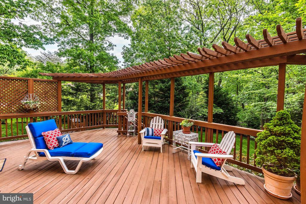 Large deck with lounging area. - 3905 PICARDY CT, ALEXANDRIA
