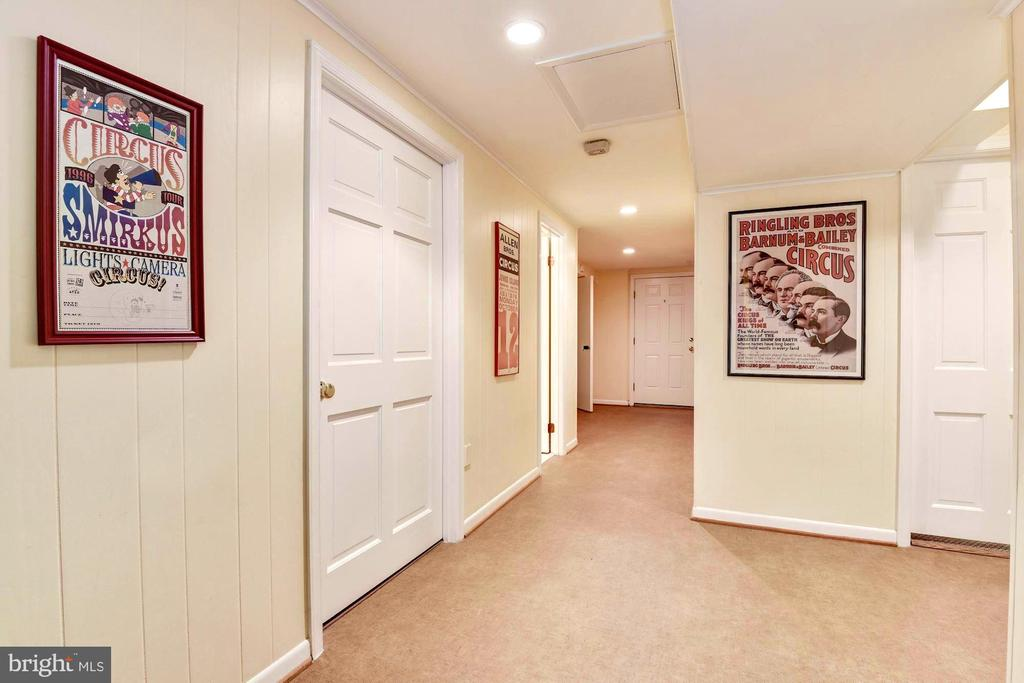 Downstairs hallways to storage and bedroom. - 3905 PICARDY CT, ALEXANDRIA