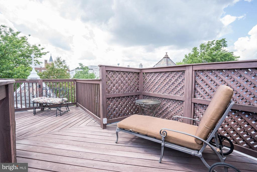 Roof Top Deck - 304 3RD ST SE, WASHINGTON