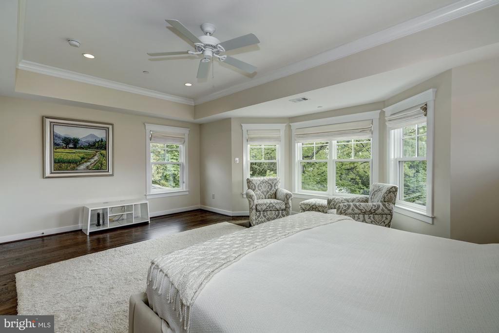 Master Bedroom view #2 - 5211 CARLTON ST, BETHESDA