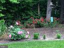 Garden tour worthy back yard! - 4112 FERRY LANDING RD, ALEXANDRIA