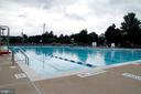 Community pool - 1709 FAIRLEIGH CT NE, LEESBURG