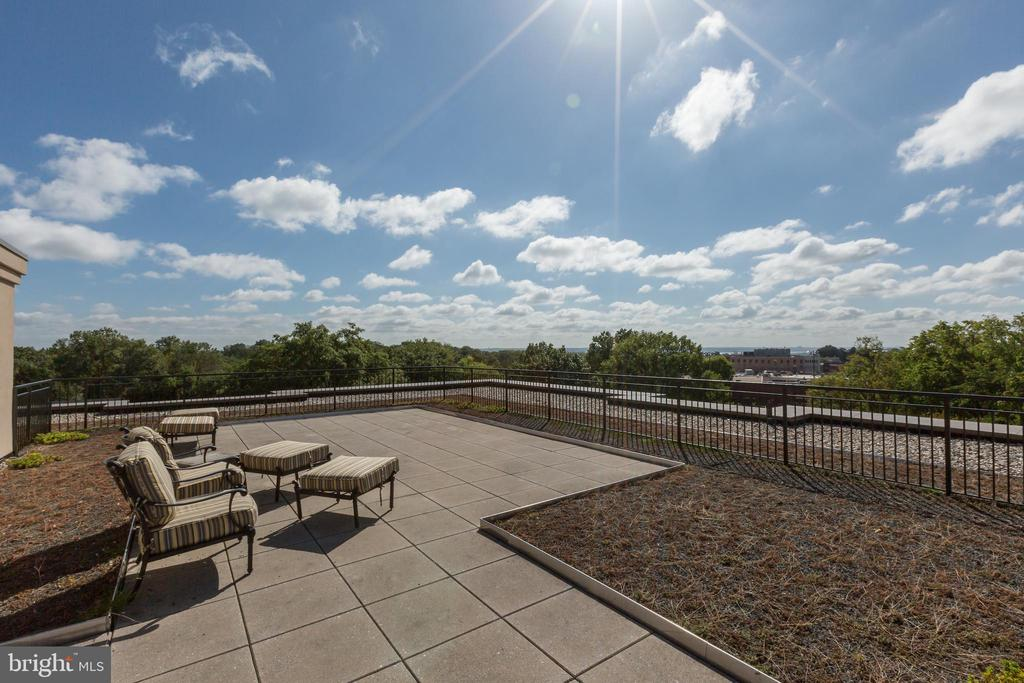 Roof Terrace - 2501 WISCONSIN AVE NW #108, WASHINGTON