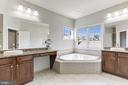 Luxurious Master Bath - 43603 CATCHFLY TER, LEESBURG