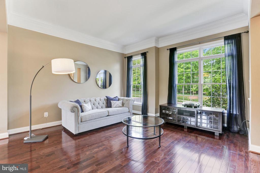 Light Filled Living Room Faces the Park - 43603 CATCHFLY TER, LEESBURG