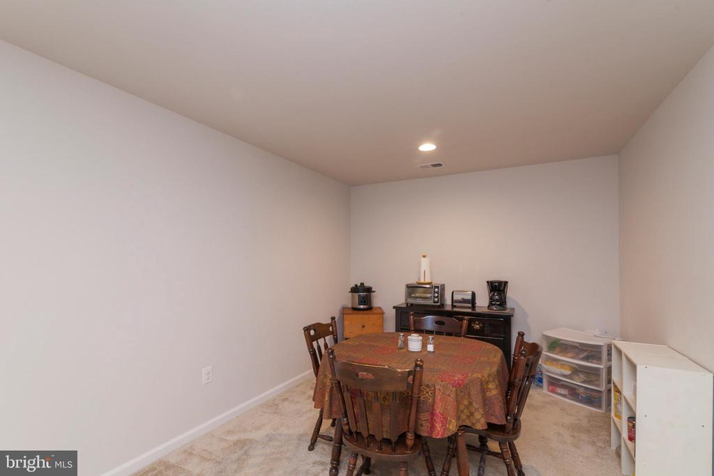 Lower Level  Rec Room Great For Pool Table - 5719 PINEY GLADE RD, FREDERICKSBURG