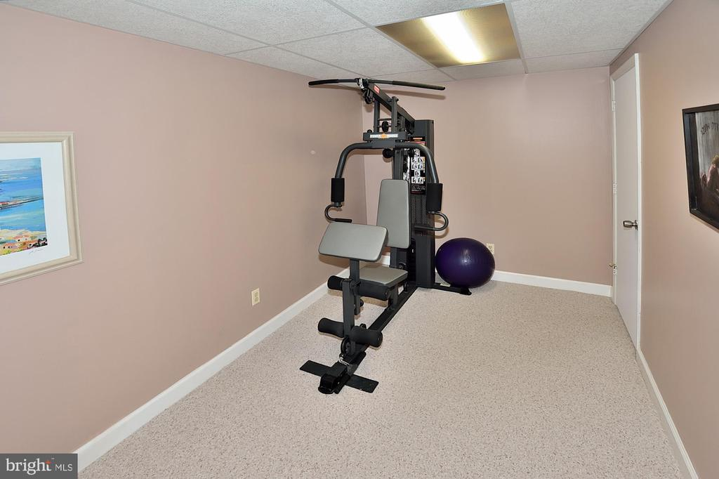 FITNESS AREA - 13466 POINT PLEASANT DR, CHANTILLY