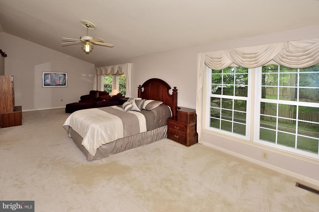 EXPANSIVE MASTER BEDROOM - 13466 POINT PLEASANT DR, CHANTILLY