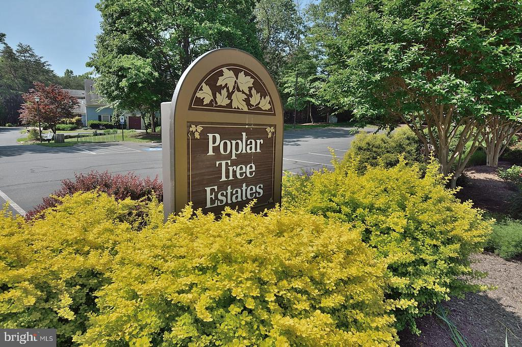 WELCOME TO POPLAR TREE ESTATES - 13466 POINT PLEASANT DR, CHANTILLY