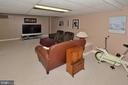 REC ROOM - 13466 POINT PLEASANT DR, CHANTILLY