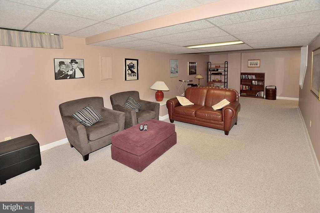 LOWER LEVEL REC ROOM - 13466 POINT PLEASANT DR, CHANTILLY